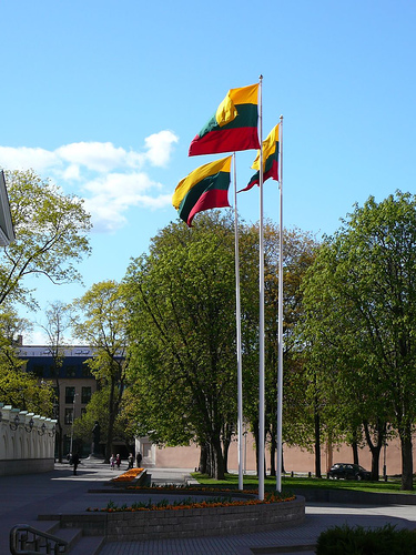 литовский флаг флаг